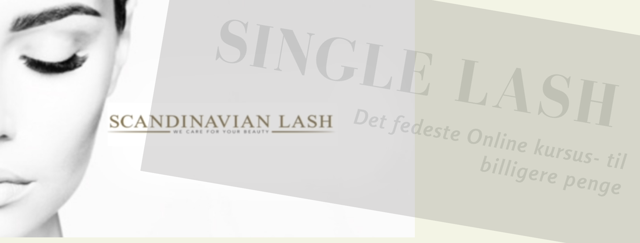 Single Lash Kursus Online – INTROPRIS